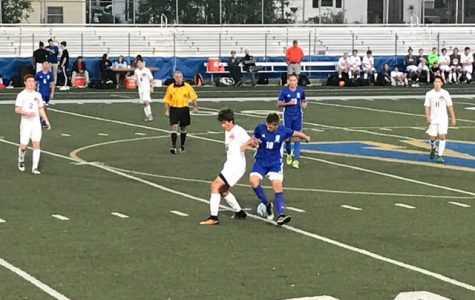 IHSA Soccer Regional: Cats win in OT vs Lake Zurich