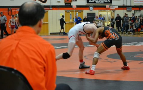 Six Libertyville wrestlers continue on to sectionals