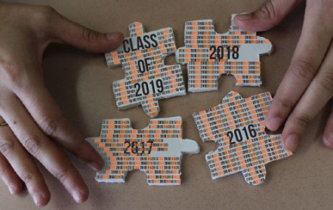 The Puzzle Pieces of High School