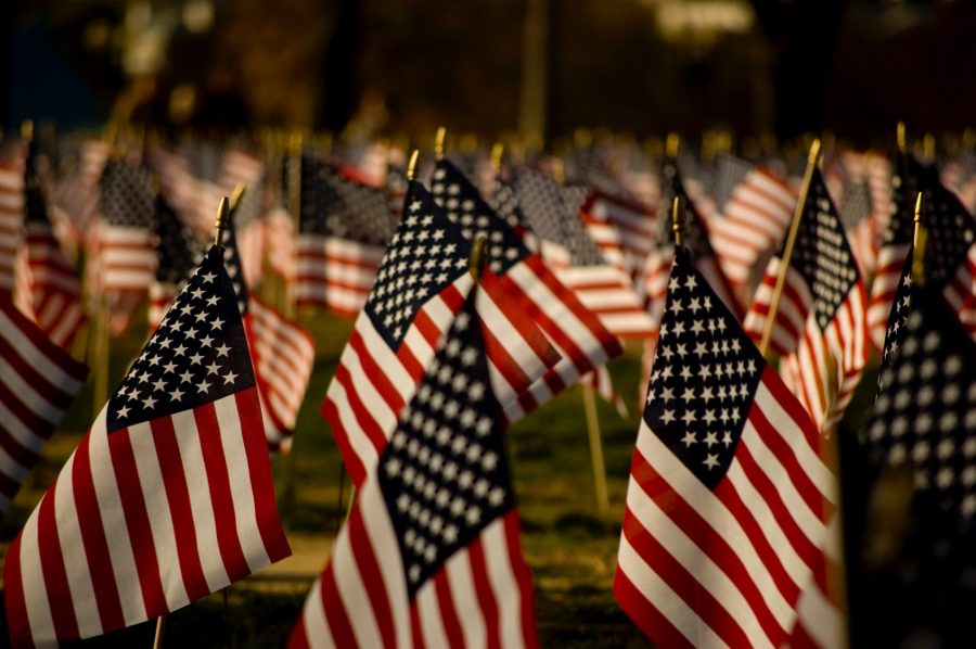 On+Nov.+10%2C+2016+the+social+studies+will+be+honoring+Veterans+Day+by+showing+a+video+recognizing+veterans+that+are+special+to+the+people+of+LHS.