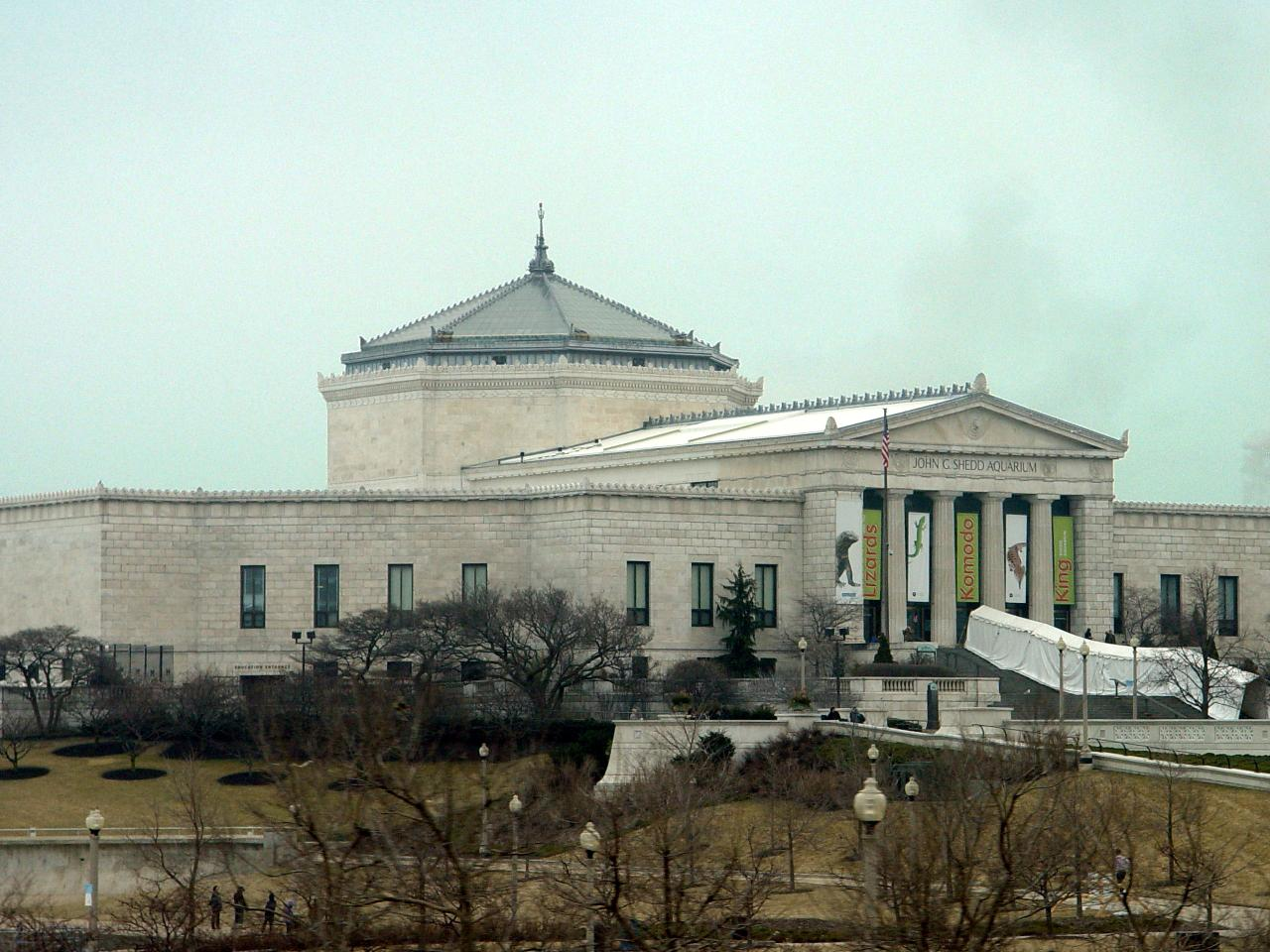 The Shedd Aquarium is  more likely than not to be dusted with snow on the outside during January, when the aquarium offers free admission for residents of Illinois.