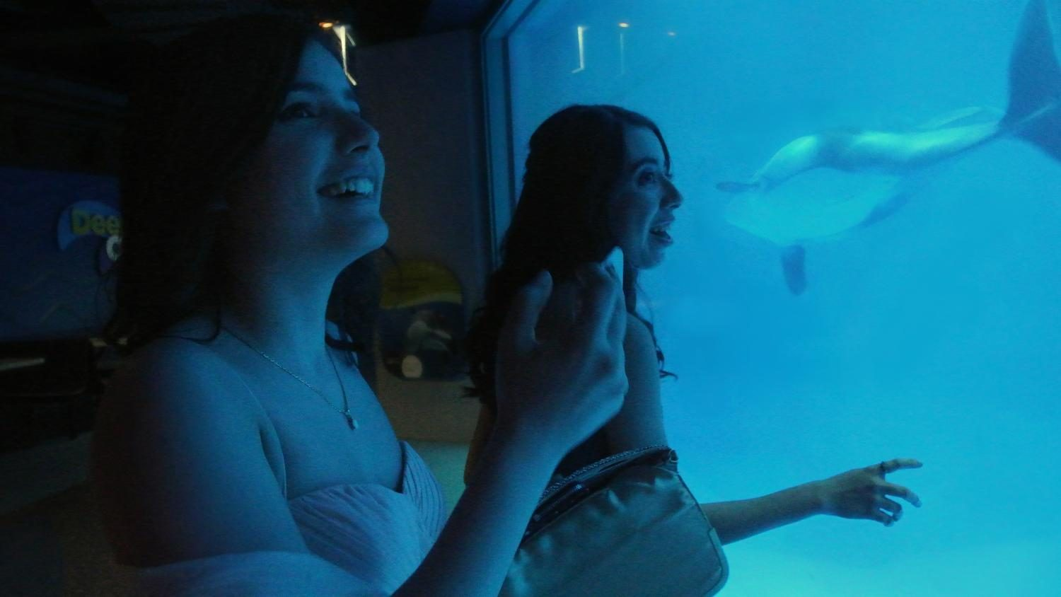 Two prom attendees gaze at the dolphins in the underwater viewing tank in the Waters of the World exhibit.