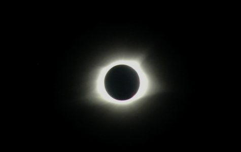 How Carbondale Viewed the Total Solar Eclipse