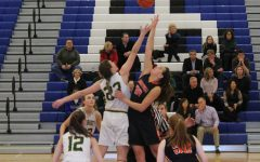 Girls basketball season ends with narrow defeat vs. Stevenson