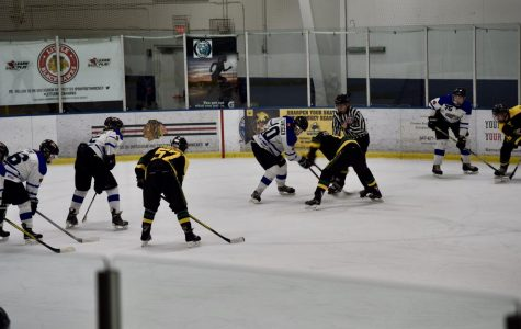 IceCats head into state playoffs undefeated in conference
