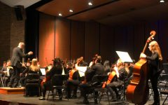 LHS orchestras perform spring orchestra concert
