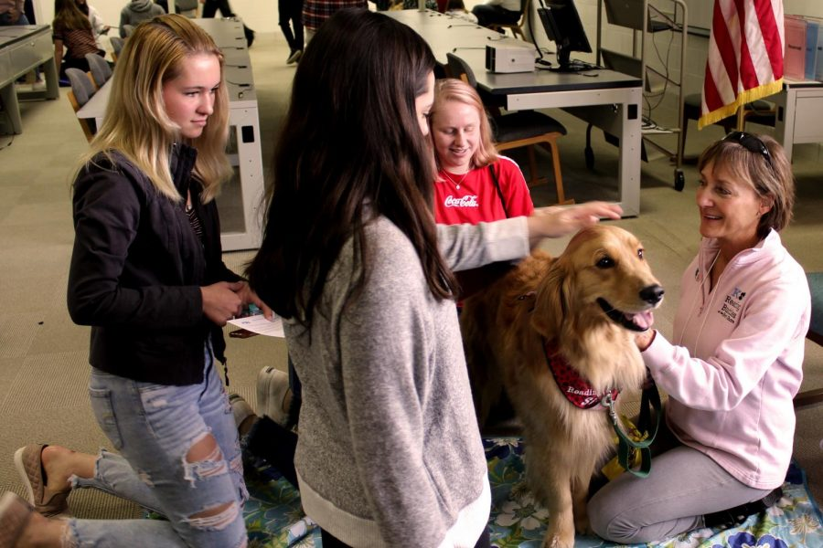 A popular health fair station among the students was the therapy dogs. The therapy dogs help students to be calmer, less stressed and more relaxed. They also can have physical benefits like pain management and reducing blood pressure.