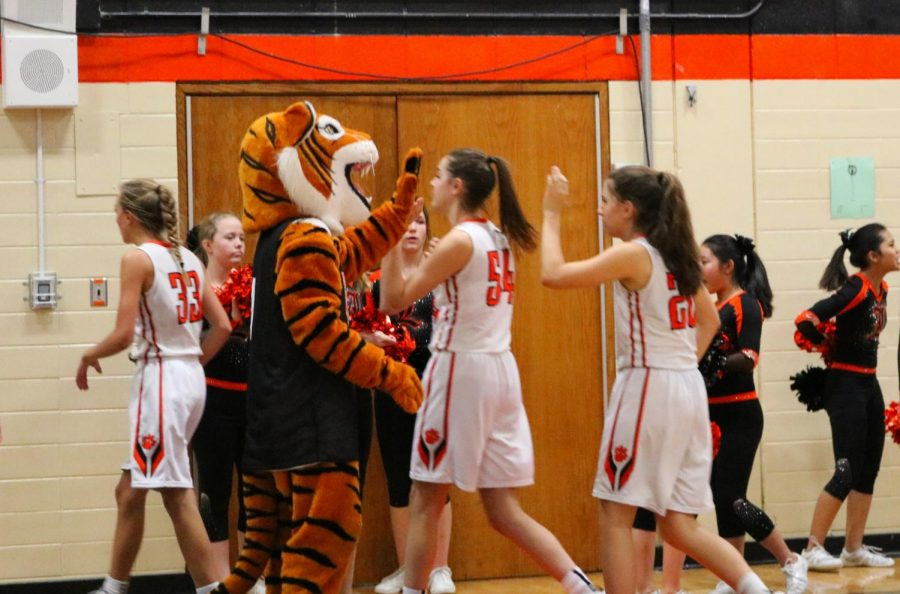 Willy the Wildcat high-fives the team as they retreat to the locker room during halftime, the score 28-21 Libertyville