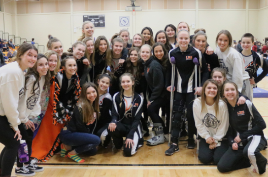 The Libertyville High School varsity gymnastics team placed fifth at the 2019 North Suburban Conference championship meet.