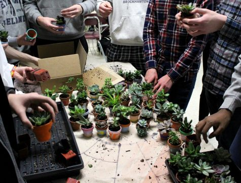 During a meeting, members of the LEAF club work together to prepare succulent plants to sell to the students and staff during lunch periods.