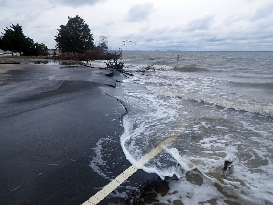 Slow-rising sea levels have caused the people of Nuatambu Island to relocate without much acknowledgement from other countries.