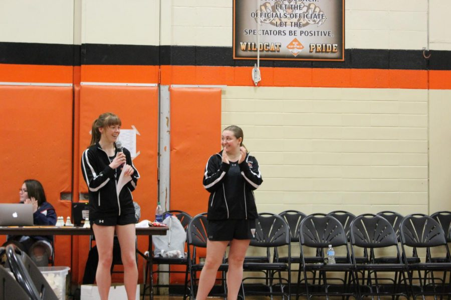 All three Libertyville girls badminton levels beat McHenry