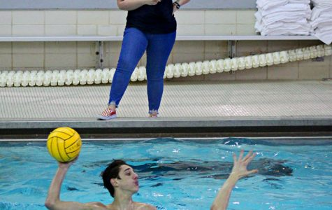 Ms. Kara Bosman has been coaching boys water polo at LHS for three years. She often faced discrimination towards the beginning of her coaching career by officials, who would mistake her male assistant coach as being the head coach instead.