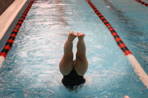 A Libertyville swimmer launches into the water during free swim.