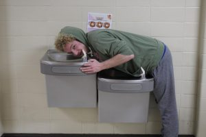 Official rankings of Libertyville Water Fountains