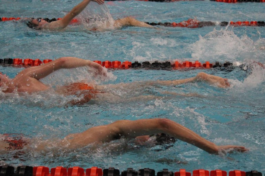 Libertyville swimmers take warm-up time to work their freestyle and backstrokes.