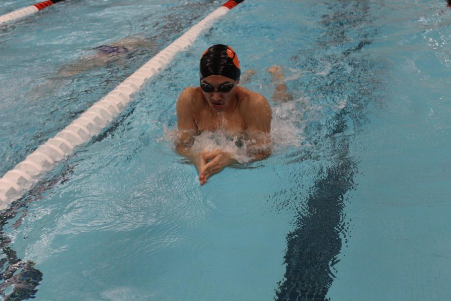 Senior Andrew Yan propels himself forward with a powerful breaststroke.