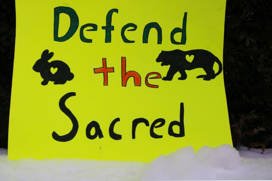 "Common signs used for the Standing Rock protests include the phrases ""Defend The Sacred,"" ""Water Is Life"" and symbols of animals and indigenous people, all of which the protesters wish to make a stand for."