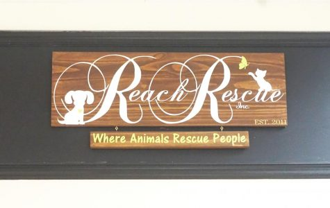 Shelters like Reach Rescue are struggling to keep up with the demands of their customers.