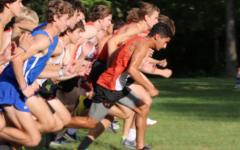 Senior Ali Faiz leads the runners off of the starting line.