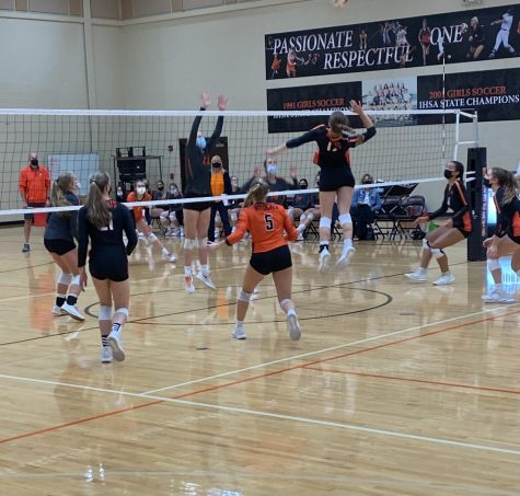 Hannah Fleming (17) times her jump and reaches back in preparation for a spike.
